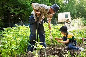 Bisa Bikin Berat Badan Turun, Ini Manfaat Berkebun Yang Wajib Kamu Ketahui