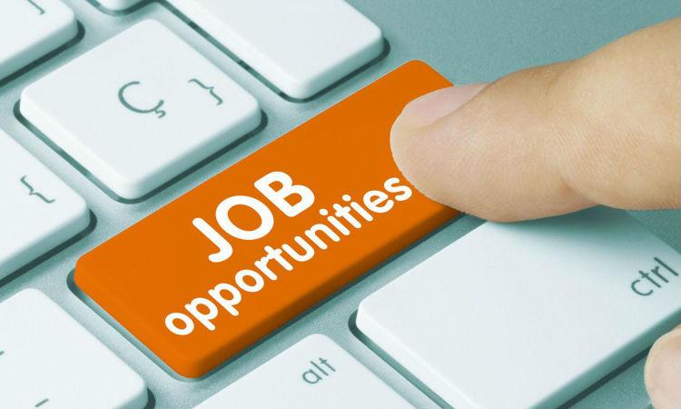 Pilihan Pekerjaan Menarik Untuk Lulusan Baru